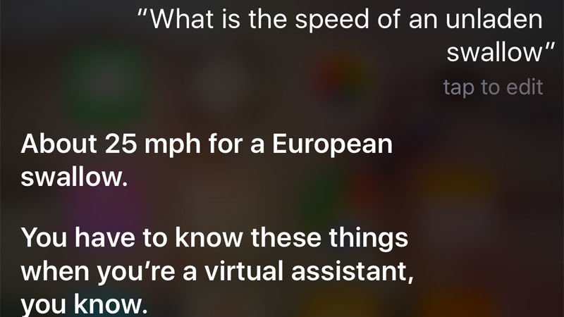 Funny things to ask Siri: Monty Python